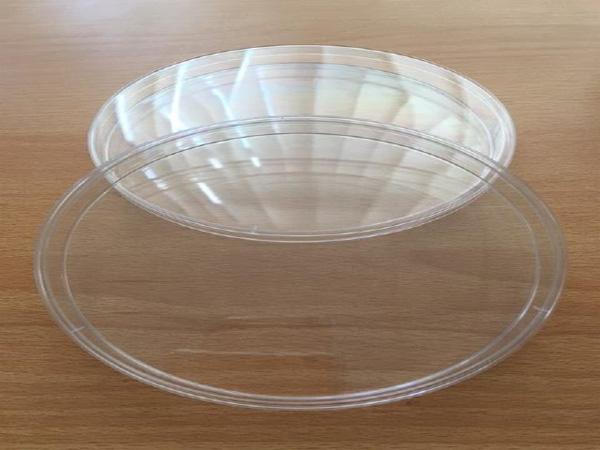 Petri Dish 150X18MM (CHARUZU)